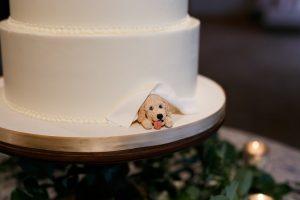 dog friendly wedding cake