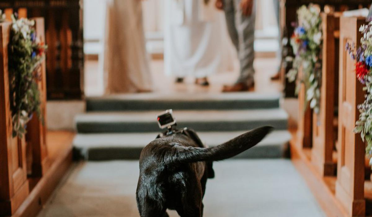 dog friendly wedding venue Healing Manor Hotel