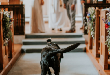 dog friendly wedding venue Healing Manor Hotel